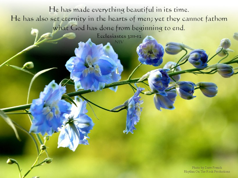 ecclesiastes3-11-12, wallpapers4god.com