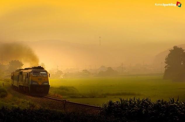 southkorea-old-train-in-gijanggun-busan,walltor.com