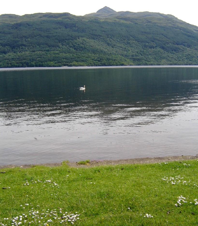 Loch Lomond, SMichaels 2008