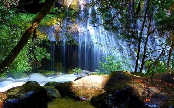tabletwallpapers.net, secret forest waterfall