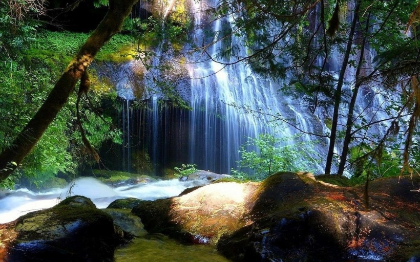 tabletwallpapers.net, secret forest waterfall