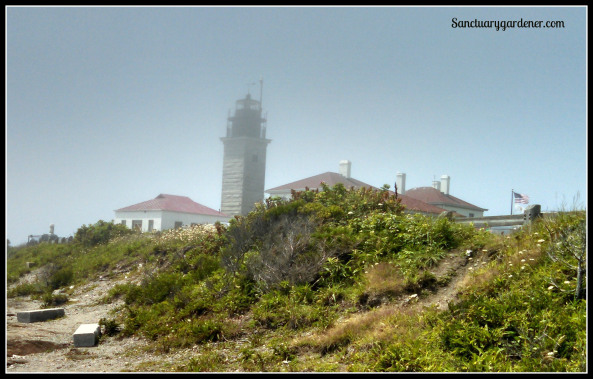 Beavertail Lighthouse in fog