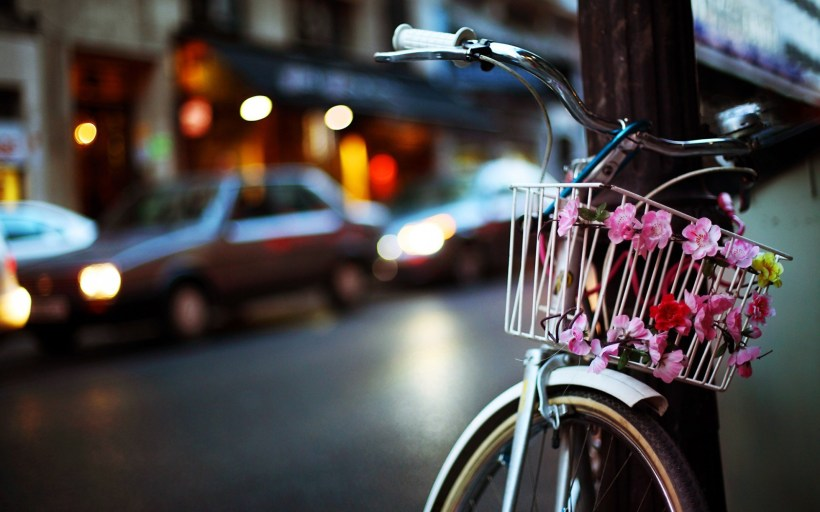 bicycle-basket-flowers-city-evening-lights-hd-wallpaper