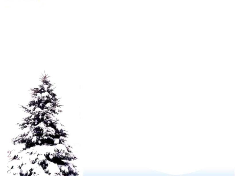 christmas-tree-snow-winter