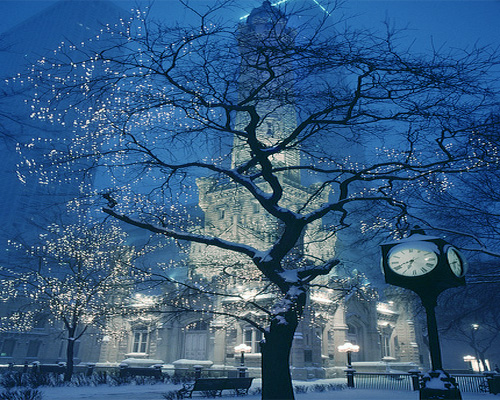 winter-tree-wallpapers-collection