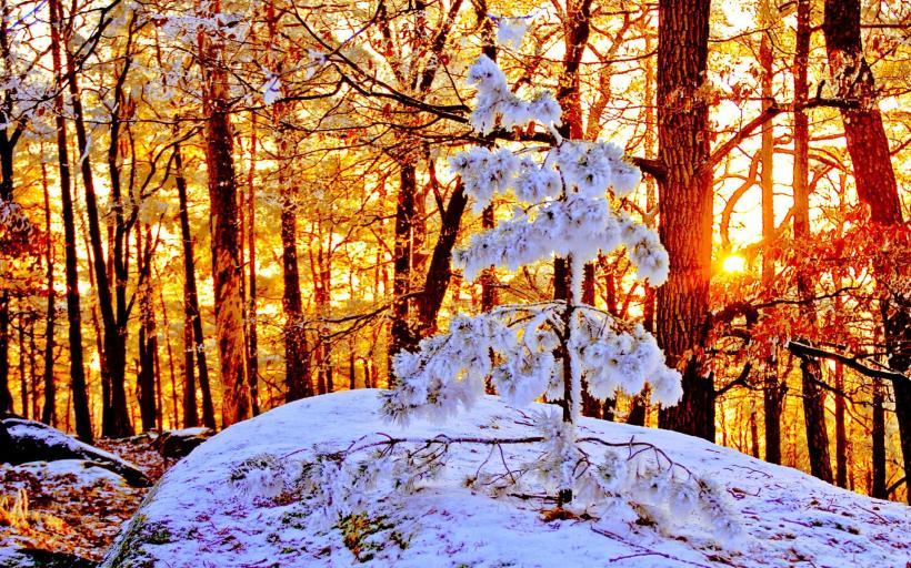 sun_snow