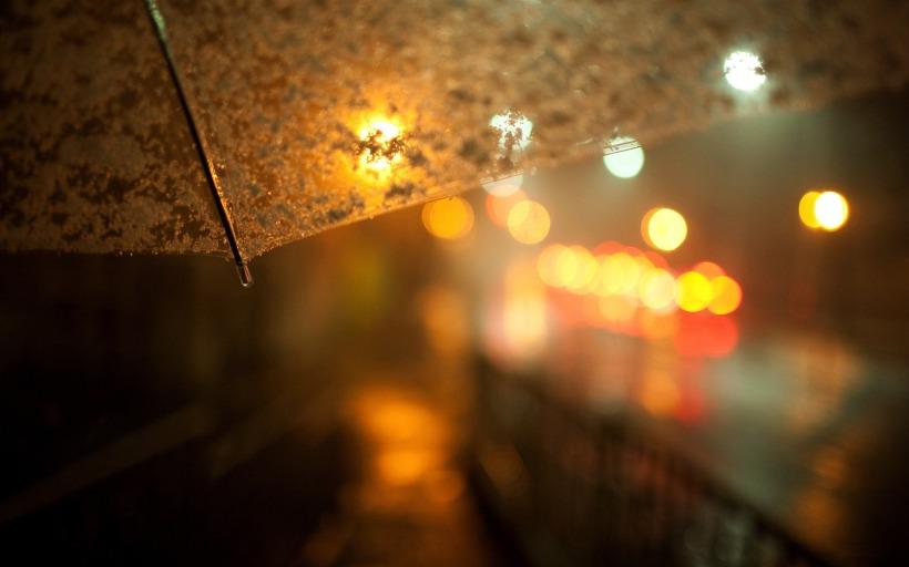 summer-rain-drops