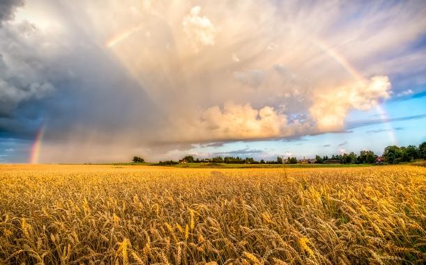 farm-field-rainbow-clouds-wide