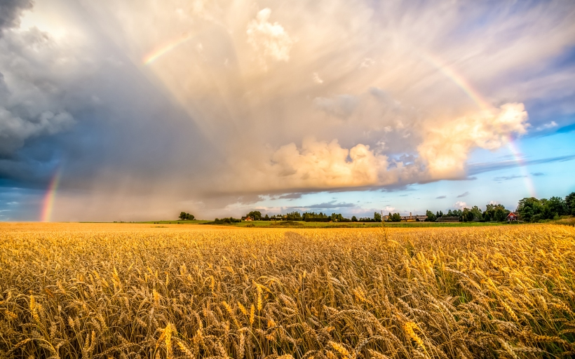 farm-field-rainbow-clouds-wide