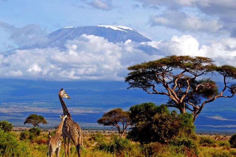 Mount-Kilimanjaro-3