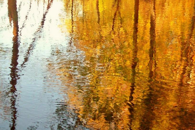 Autumn-River-autumn-3331616-1800-1200